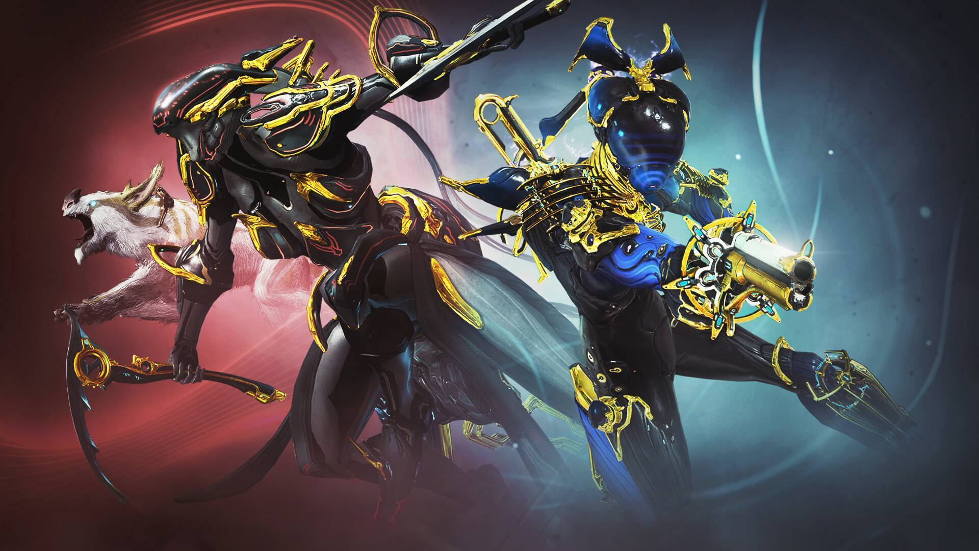 The Vault Opens For Trinity And Nova In Warframe Tomorrow An easy nova guide covering all her abilities as well as some of the best builds to use and tips on how to use her effectively. the vault opens for trinity and nova in