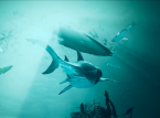 Maneater launch trailer shows the crazy lives of Great Whites