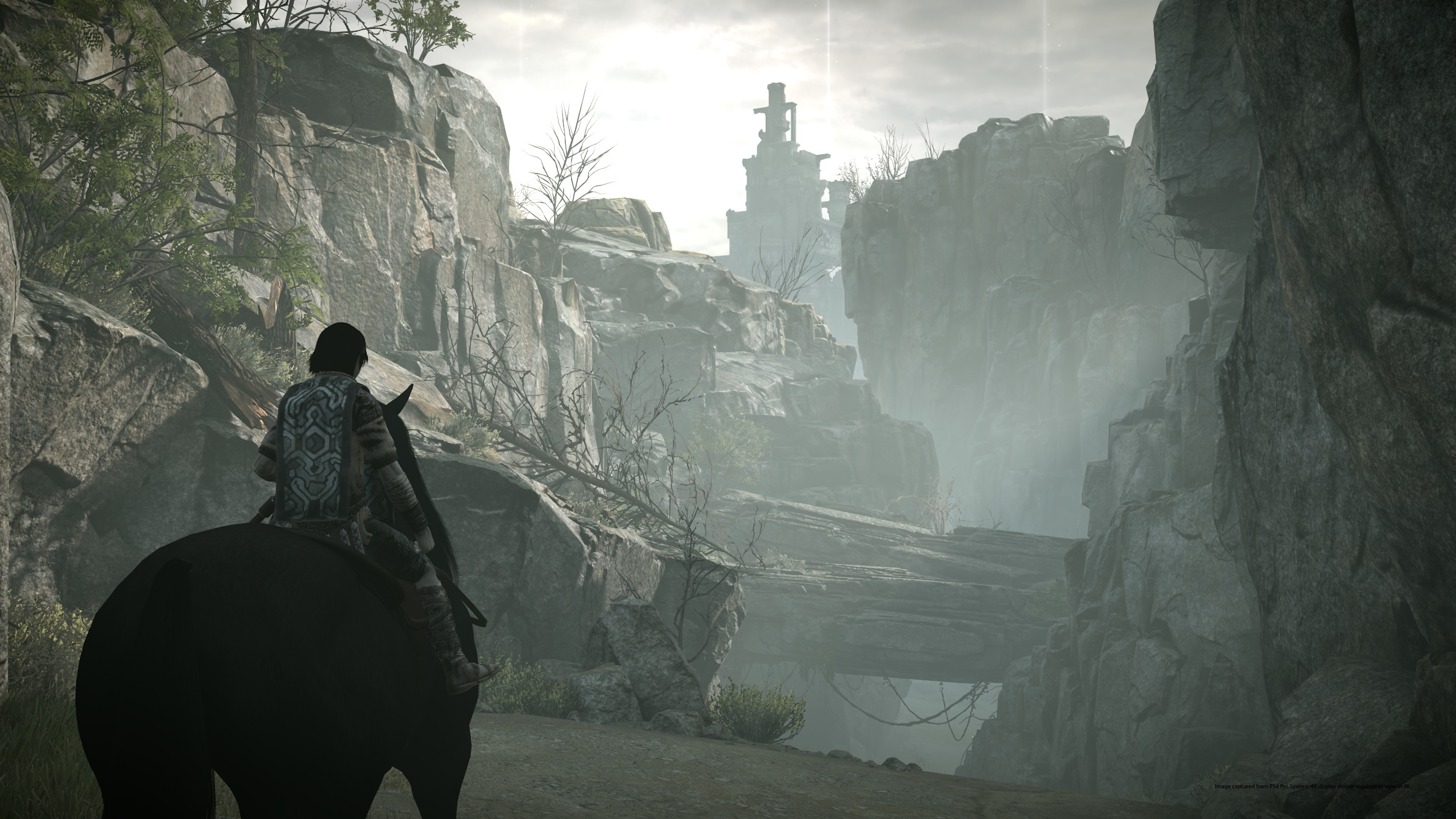 Watch The Fantastic Intro For Shadow Of The Colossus Remake