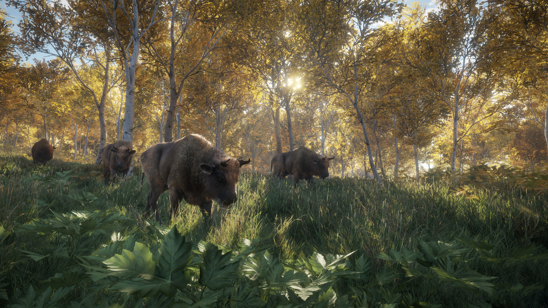 نتیجه تصویری برای The Hunter: Call Of The Wild 1920x1080