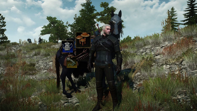 These are the 6 best mods for The Witcher 3