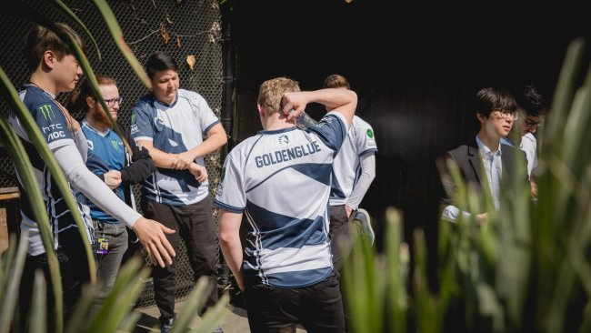 Team Liquid recruits Insanity to their squad