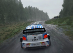 Dirt Rally on PS4 & Xbox One