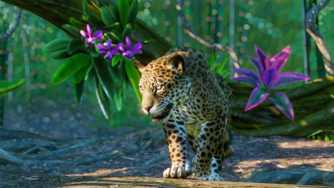 Planet Zoo welcomes five new animals from South America