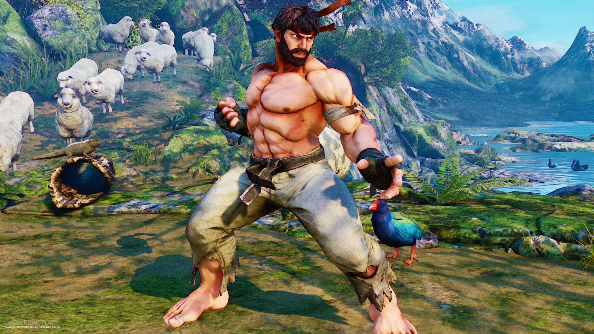 Pictures Of Hot Ryu Pre Order Bonus For Street Fighter V 2 8