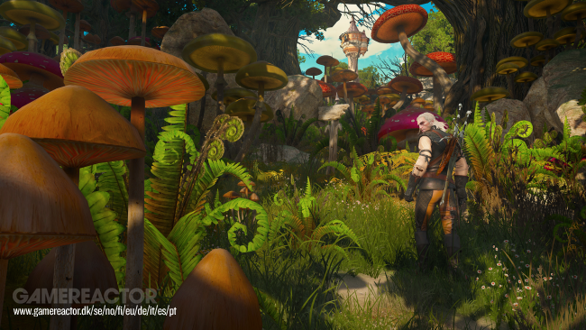 Take a tour of Touissant, The Witcher 3's new region - Gamereactor UK - The Witcher 3: Wild Hunt