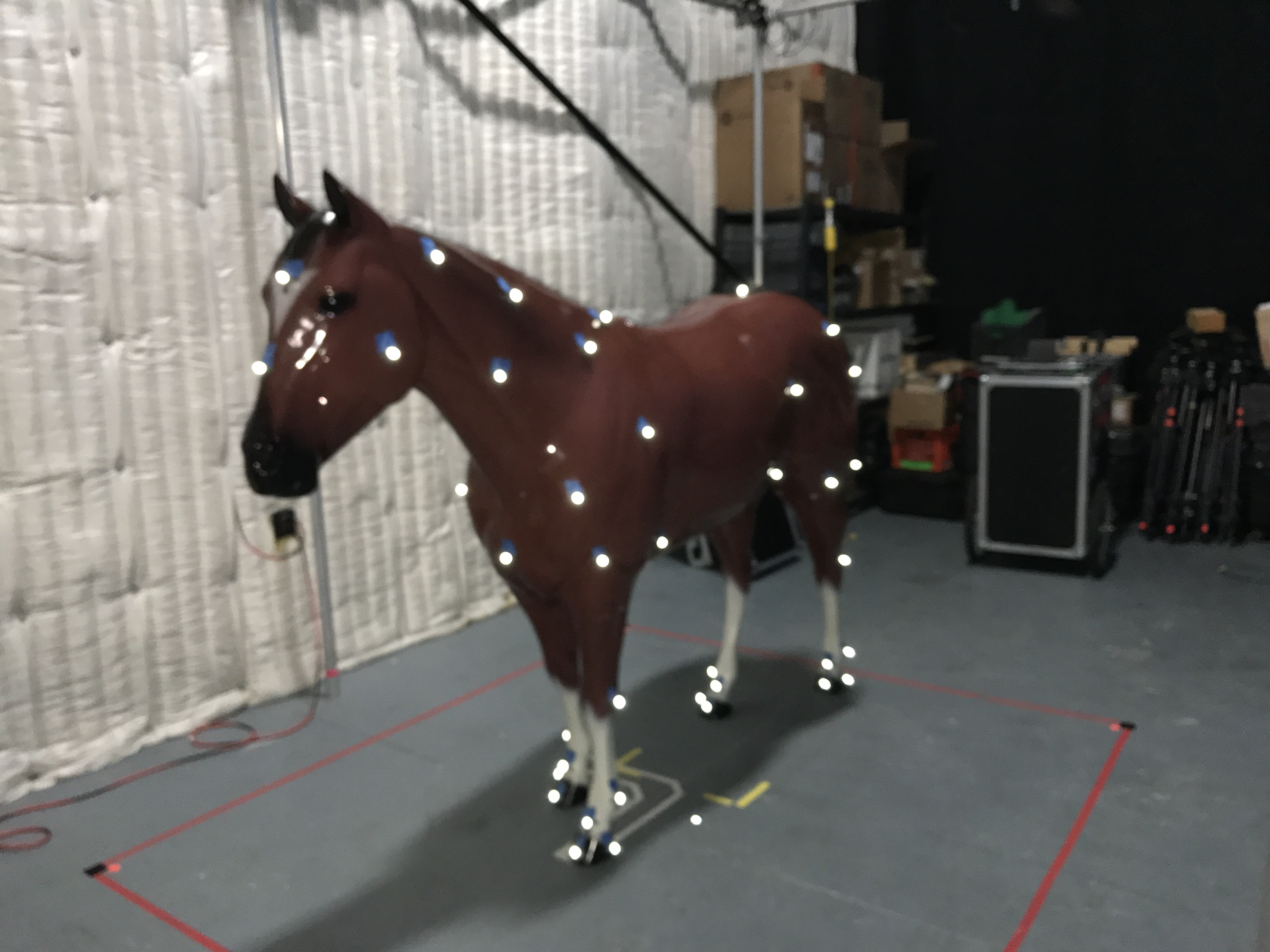 Ever wondered how you motion capture a horse? - - Gamereactor