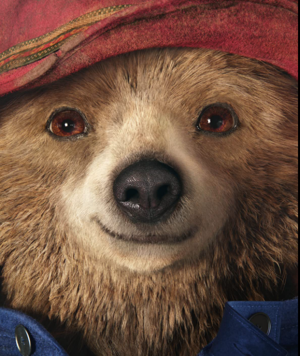 Development is underway on Paddington 3