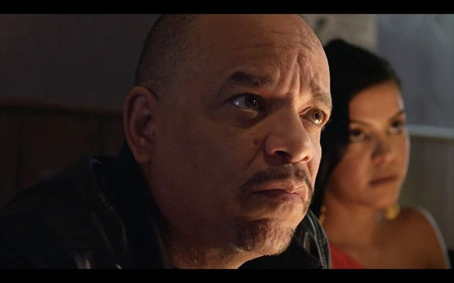 Is Ice T Providing A Voice For Borderlands 3 In this borderlands 3 expansion pack, the player is cordially invited to the wedding of sir alistair hammerlock and wainwright jakobs in an eerie hotel on the ice world of xylourgos, where gothic romance and lovecraftian horrors await. providing a voice for borderlands 3