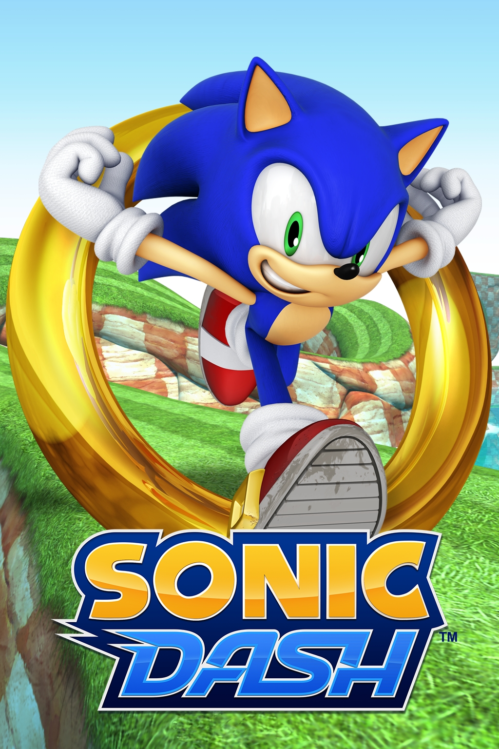 Pictures Of Sonic Dash 1 33