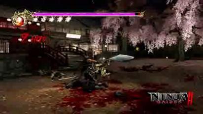 Ninja Gaiden 2 - Day of the Ninja 3
