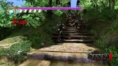 Ninja Gaiden: Day of the ninja