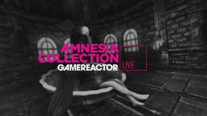 AMNESIA COLLECTION - LIVESTREAM REPLAY