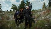 The Witcher 3: Wild Hunt - Best Mods according to ESL