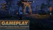 Elder Scrolls Online: Blackwood - Sightseeing with the Developers