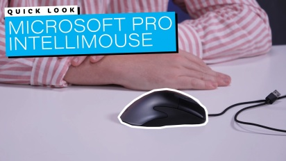 Microsoft Pro IntelliMouse - Quick Look